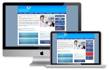 Caatalyst Website - Before