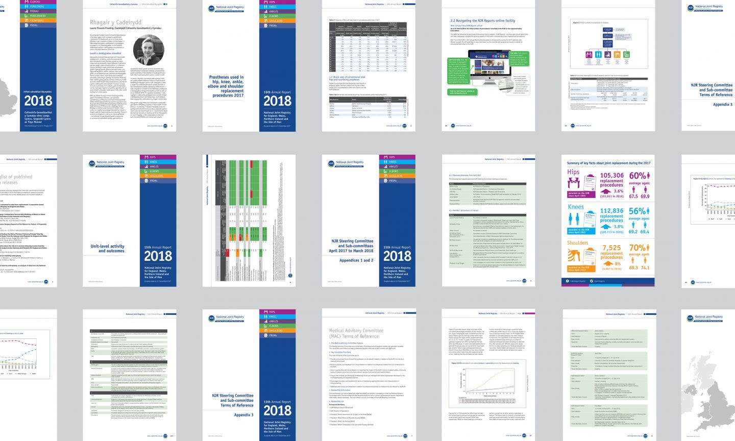 National Joint Registry annual report design
