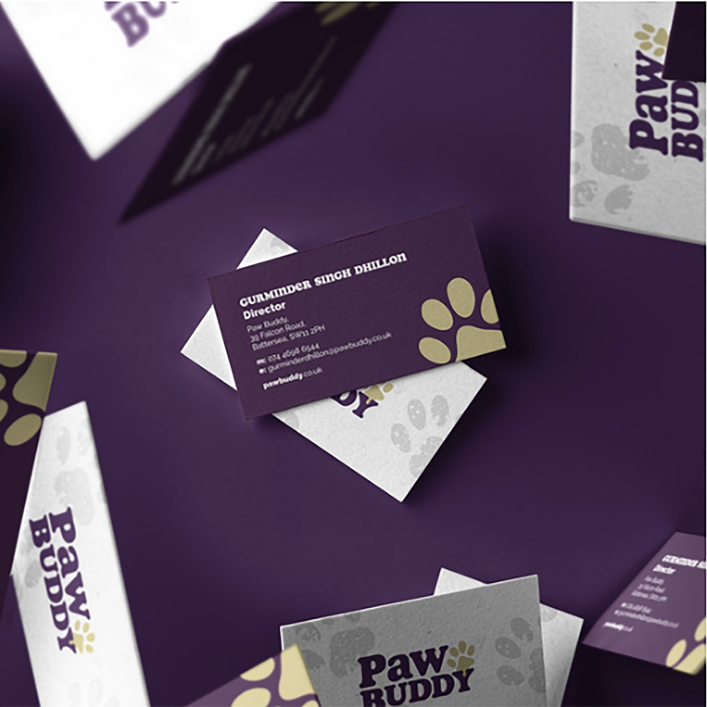 Paw Buddy Business Card Designs