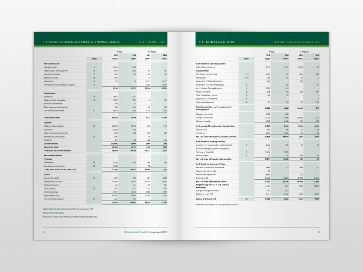 ECO Animal Health Group 2019 Annual Report Financial Tables