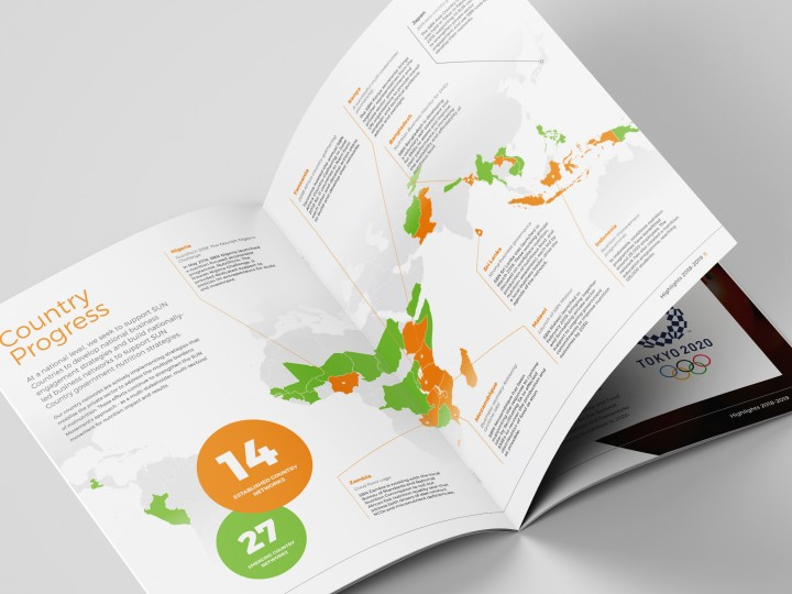Global Alliance for Improved Nutrition Brochure Design