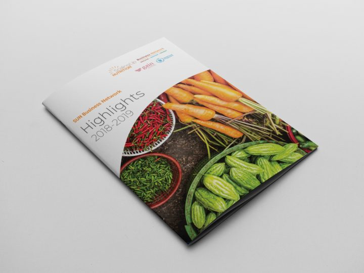 Annual Report Design for GAIN - Front cover