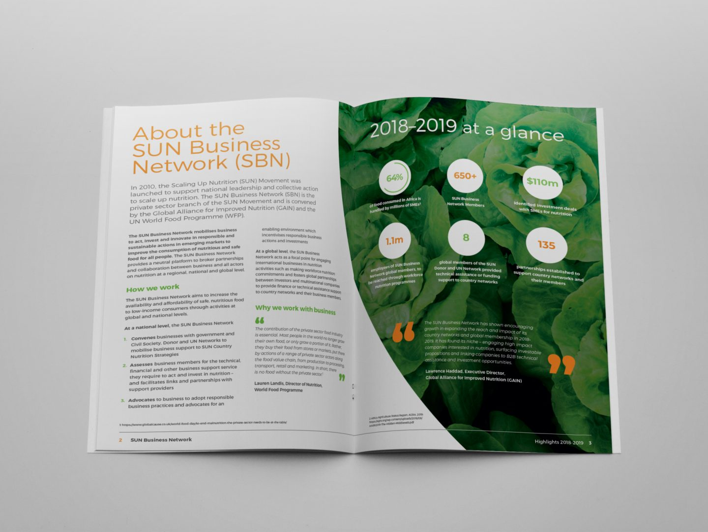 GAIN Annual Report Design - spread